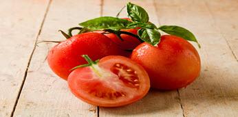 tomatoes-thumbnail