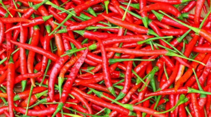 Hottest-chillis